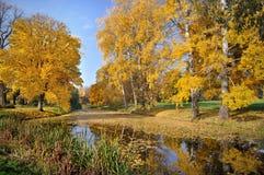 De herfst lanscape met een meer Stock Fotografie