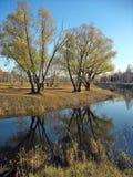 De herfst lanscape. Vijver in het park Royalty-vrije Stock Afbeelding