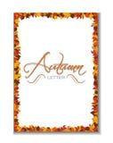 De herfst leterhead achtergrond Stock Foto