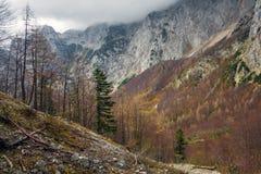 De herfst in Logar-Vallei Royalty-vrije Stock Foto's