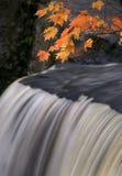 De herfst Magische IV Stock Afbeeldingen