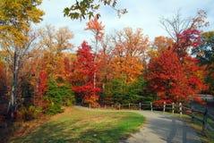 De herfst in Maryland stock afbeeldingen