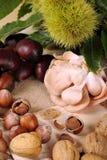 De herfst met zijn vruchten Royalty-vrije Stock Afbeelding