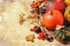 De herfst minipompoenen royalty-vrije stock fotografie