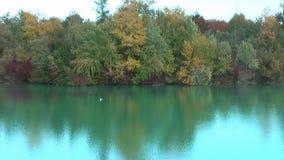 De herfst Mooie die bomen in het meer worden weerspiegeld stock videobeelden
