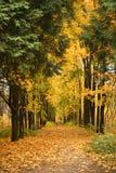 De herfst in Moskou Royalty-vrije Stock Afbeelding