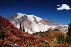 De herfst in Mt. Regenachtiger royalty-vrije stock afbeelding