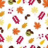 De herfst naadloos patroon: bladeren, eikels, bessen en kastanjes Royalty-vrije Stock Foto's