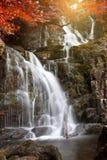De herfst in Nationaal Park Killarney Stock Fotografie