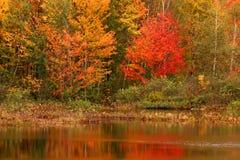 De herfst in New England Royalty-vrije Stock Afbeeldingen