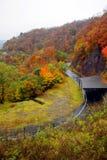 De herfst in Nikko Stock Afbeelding