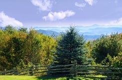 De herfst in Noord-Carolina Royalty-vrije Stock Foto