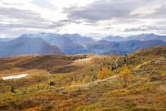 De herfst in Noorwegen Stock Foto's
