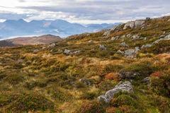 De herfst in Noorwegen Stock Afbeeldingen