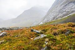 De herfst in Noorwegen Stock Foto