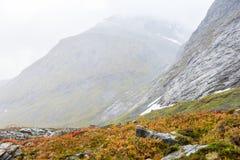 De herfst in Noorwegen Stock Afbeelding