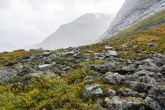De herfst in Noorwegen Royalty-vrije Stock Foto