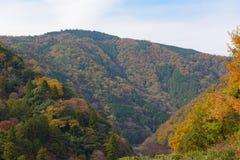 De herfst op Arashiyama-meningspunt Royalty-vrije Stock Afbeelding