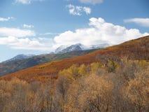 De herfst op de Alpiene Lijn Royalty-vrije Stock Afbeeldingen