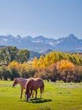 De herfst op de Boerderij royalty-vrije stock afbeeldingen