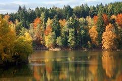 De herfst op de lake Stock Afbeeldingen