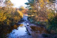 De herfst op Gemeenschappelijke Woodbury, Devon Stock Afbeeldingen