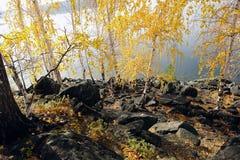 De herfst op het eiland Royalty-vrije Stock Fotografie