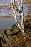 De herfst op het eiland Royalty-vrije Stock Afbeeldingen