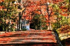 De herfst op het Eind van Wegen Stock Foto's