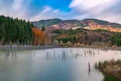 De herfst op Meer Cuejdel in Roemenië Stock Foto's