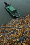 De herfst op rivier Royalty-vrije Stock Foto