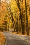 De herfst op two-lane weg Stock Foto's