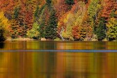 De herfst op vreedzaam meer Royalty-vrije Stock Afbeeldingen