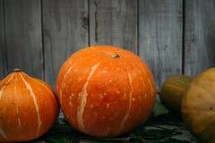 De herfst oranje pompoen op donkere houten achtergrond Stock Afbeelding