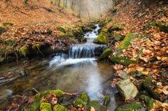 De herfst oranje waterval Stock Afbeeldingen