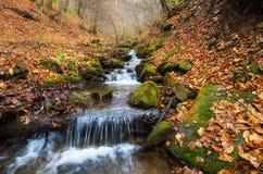 De herfst oranje waterval Royalty-vrije Stock Afbeeldingen