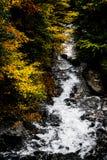 De herfst in Oslo Stock Afbeelding