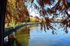 De herfst over het meer Royalty-vrije Stock Foto's