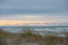 De herfst in Palanga-Duinen met Oostzee op achtergrond en sluit omhoog van onkruid Stock Foto