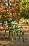 De herfst in Parijs Stock Afbeelding
