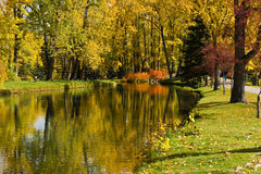 De herfst in park Royalty-vrije Stock Foto's
