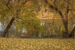De herfst in park Riga Letland Stock Foto