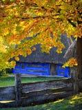 De herfst in Pirogovo Royalty-vrije Stock Afbeelding