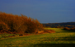 De herfst in platteland Stock Afbeeldingen