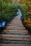 De herfst in Plitvice Stock Afbeeldingen
