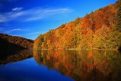 De herfst in Plitvice Stock Foto