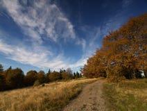 De herfst in Polen royalty-vrije stock foto