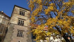 De herfst in Praag Stock Afbeelding