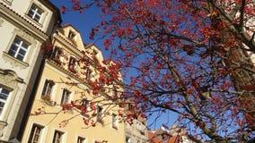 De herfst in Praag Royalty-vrije Stock Afbeelding