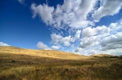 De herfst in Prairie - schoonheid van aard Royalty-vrije Stock Fotografie